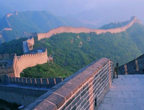 China 2019: desaceleração e aumento das insolvências